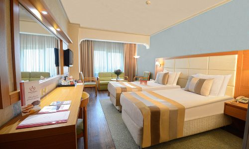 6-DLX-TWIN-ROOM